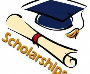Image result for Full scholarship for 100 UAE students wishing to study Ayush in India